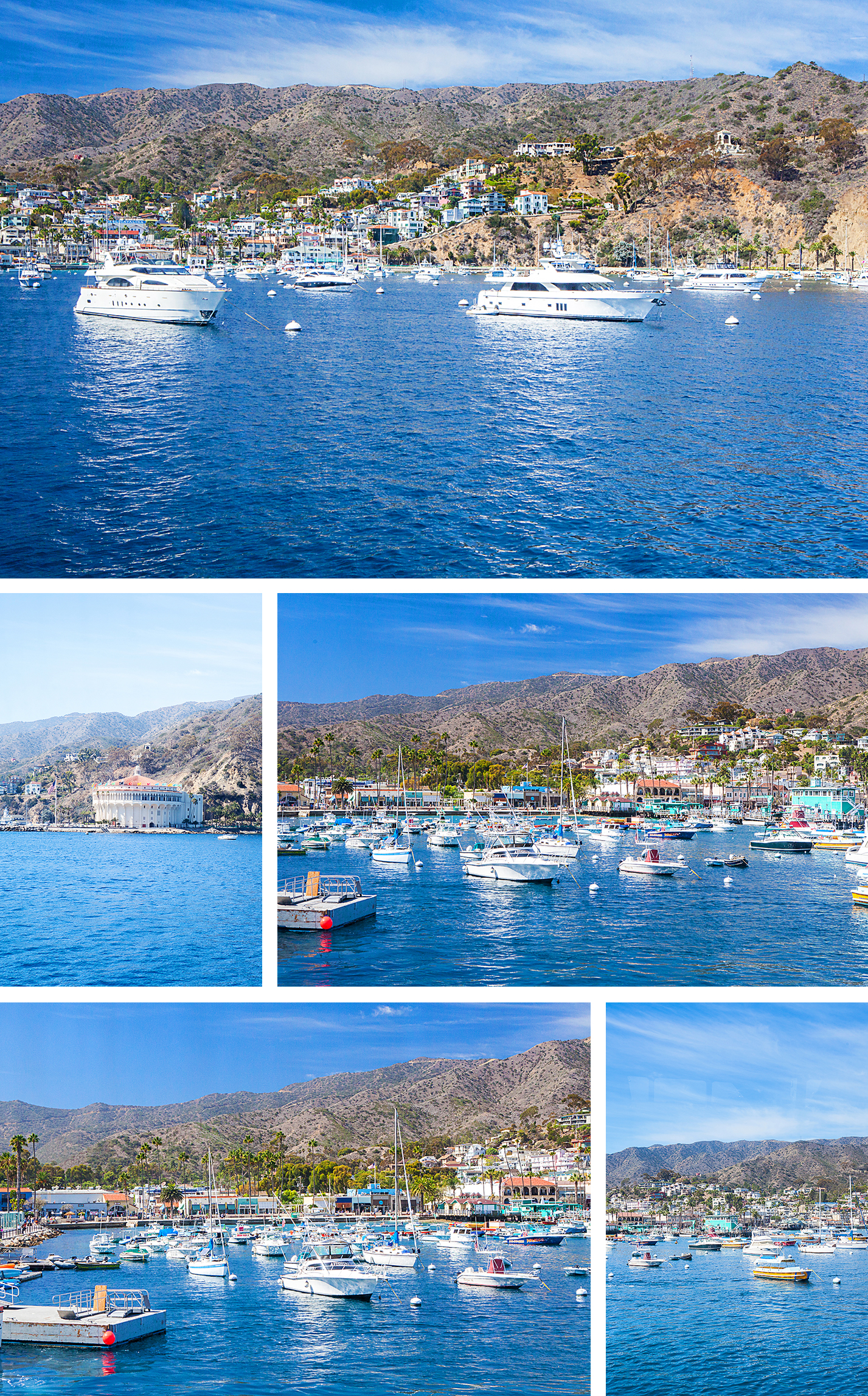 catalina island, catalina express, taste of catalina food tour, avalon