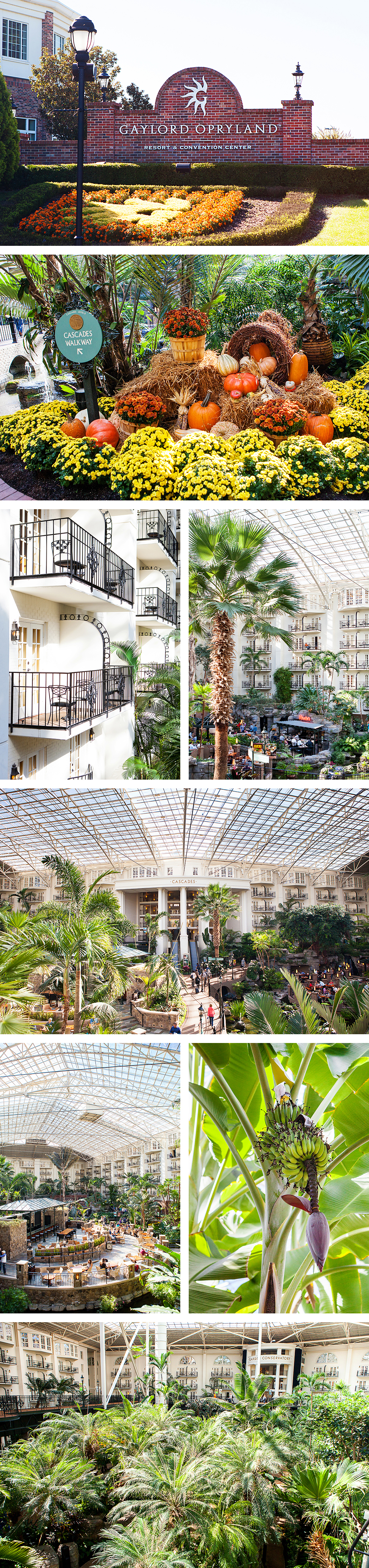Gaylord Opryland Resort & Convention Center | Nashville, Tennessee