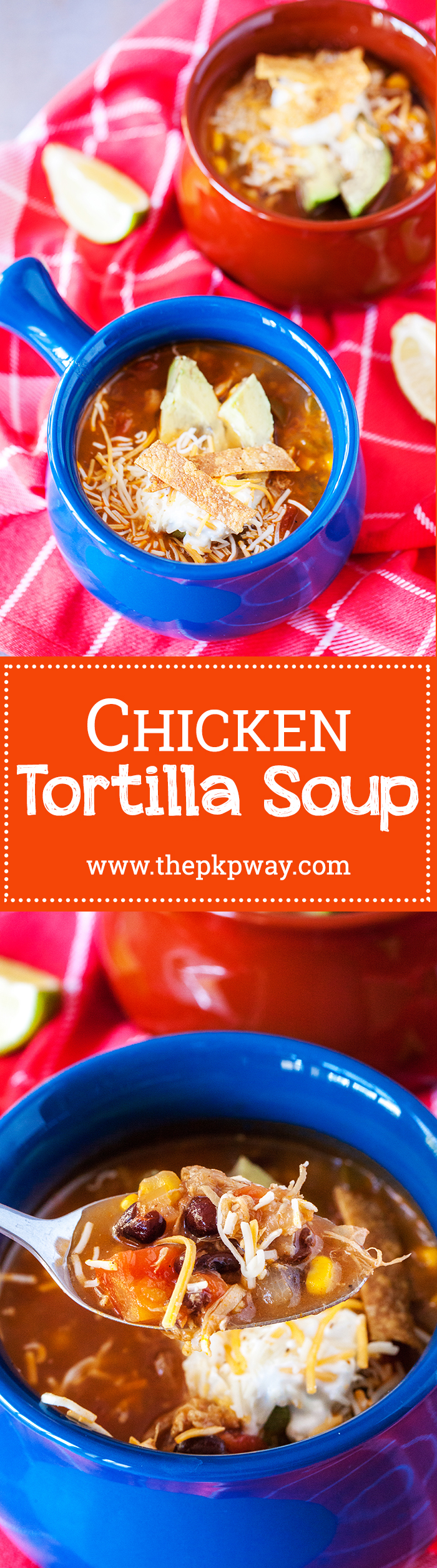 Chicken Tortilla Soup - One batch is not enough!