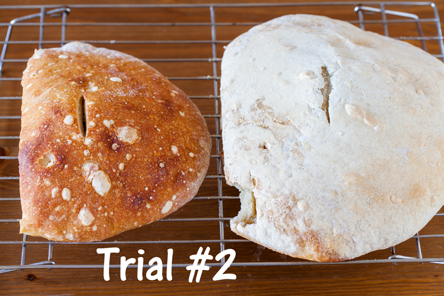 Learn to bake Sourdough Bread from scratch.